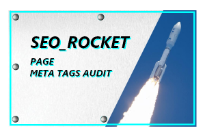 3.10 SEO_ROCKET - META TAGS AUDIT | PER PAGE